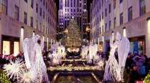 World famous Rockefeller Center Christmas tree has arrived