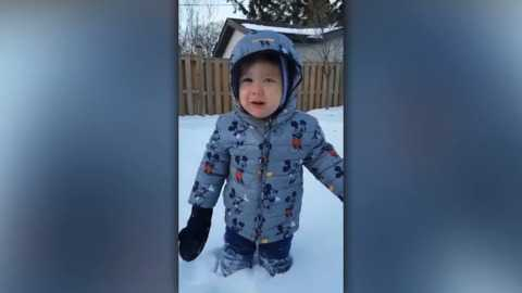 Did You See It The Cutest But Also Most Accurate Reaction To More Snow